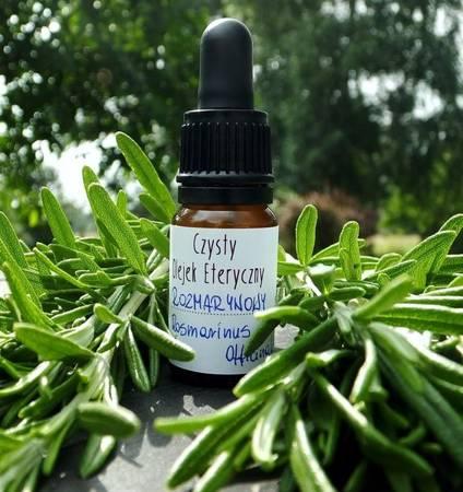 Czysty eteryczny olejek rozmarynowy
